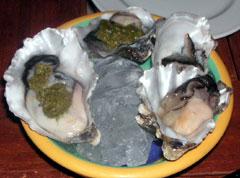 aotea_oyster.jpg