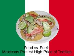 highprice_tortilla.jpg