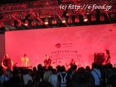 germanfesta2011_stage.jpg