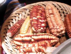 peru_corns.jpg